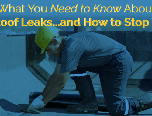 What You Need to Know about Flat Roof Leaks…and How to Stop Them