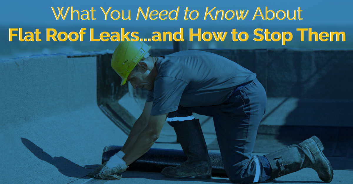 What You Need to Know about Flat Roof Leaks...and How to Stop Them