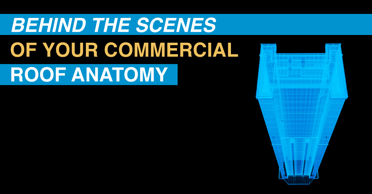 Behind The Scenes Of Your Commercial Roof Anatomy