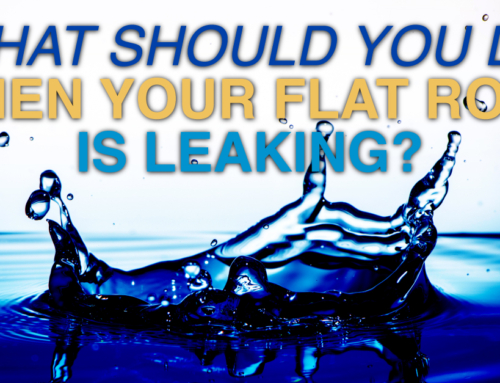 What Should You Do When Your Flat Roof Is Leaking?