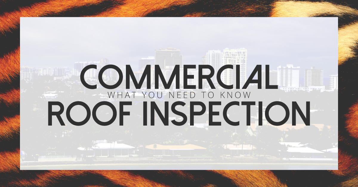BLOGS-Commercial_Inspection