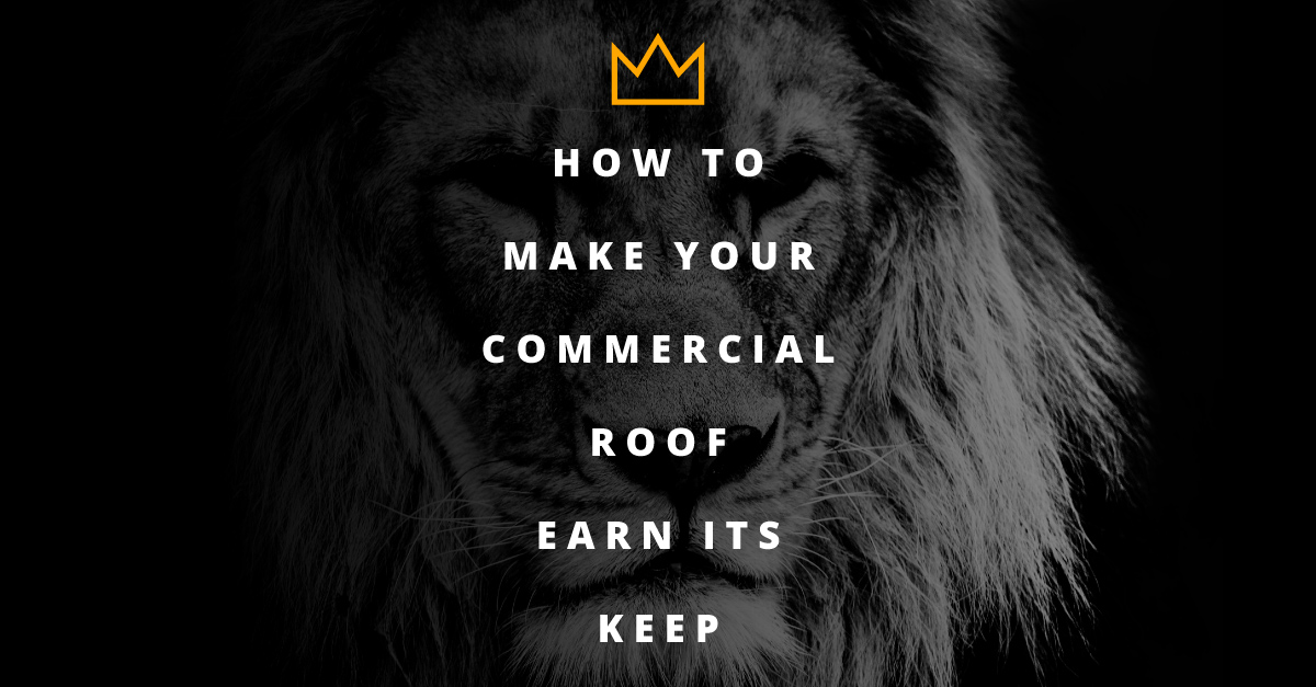 Make your commercial roof earn its keep