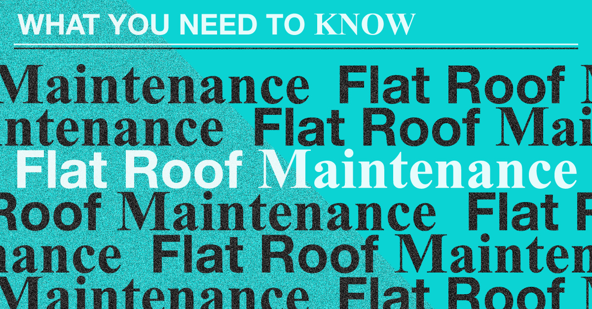What You Need to Know About Flat Roof Maintenance