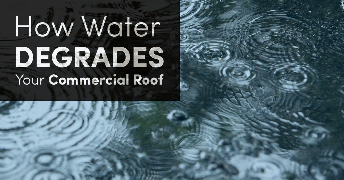 How Water Degrades Your Commercial Roof