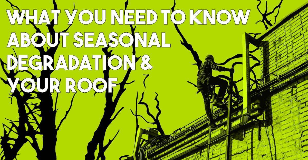 What You Need to Know about Seasonal Degradation and Your Roof