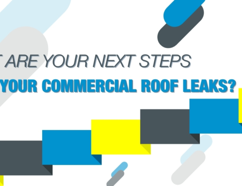 What Are Your Next Steps When You Commercial Roof Leaks?
