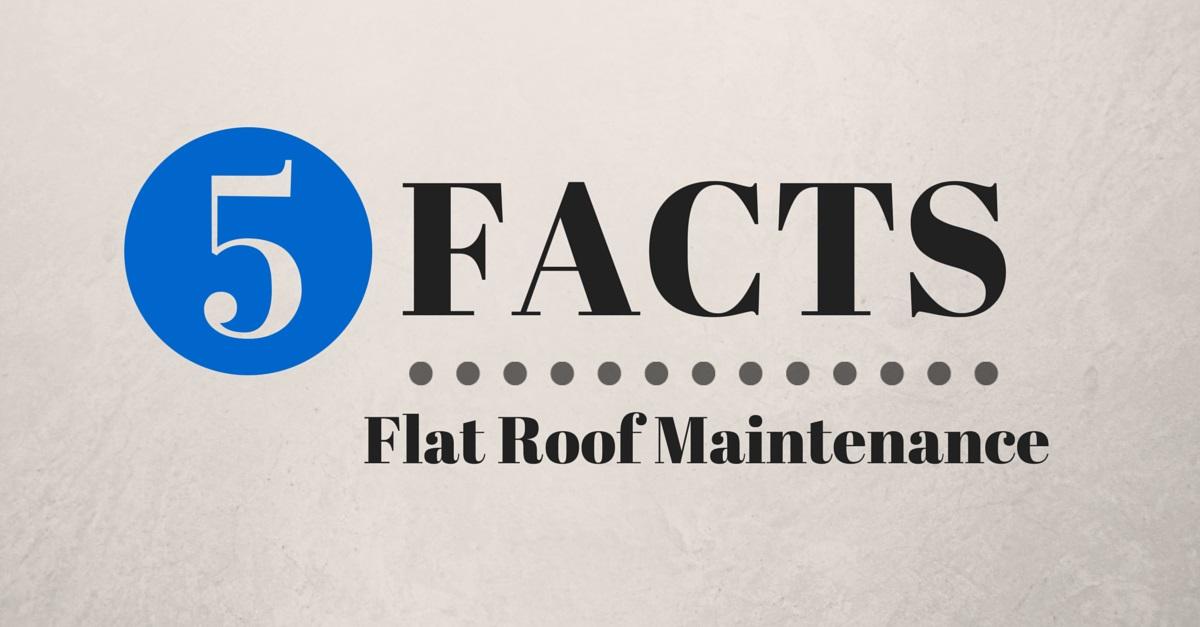 5 facs about flat roof maintenance
